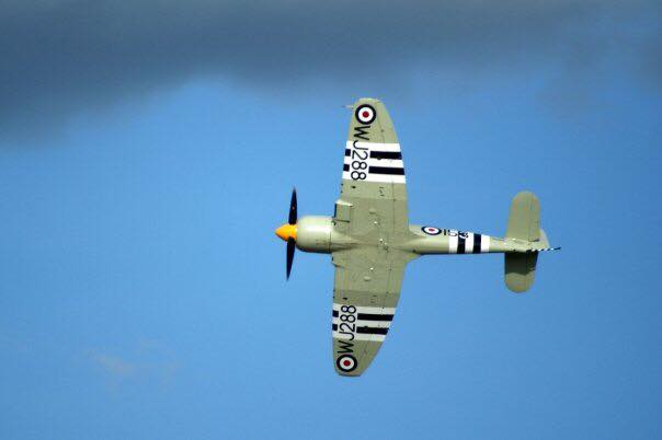 A Sea Fury at Oshkosh 2009. Copyright: Dave Snyder, 2009.