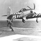 British Sea Furies and MiGs in Korea